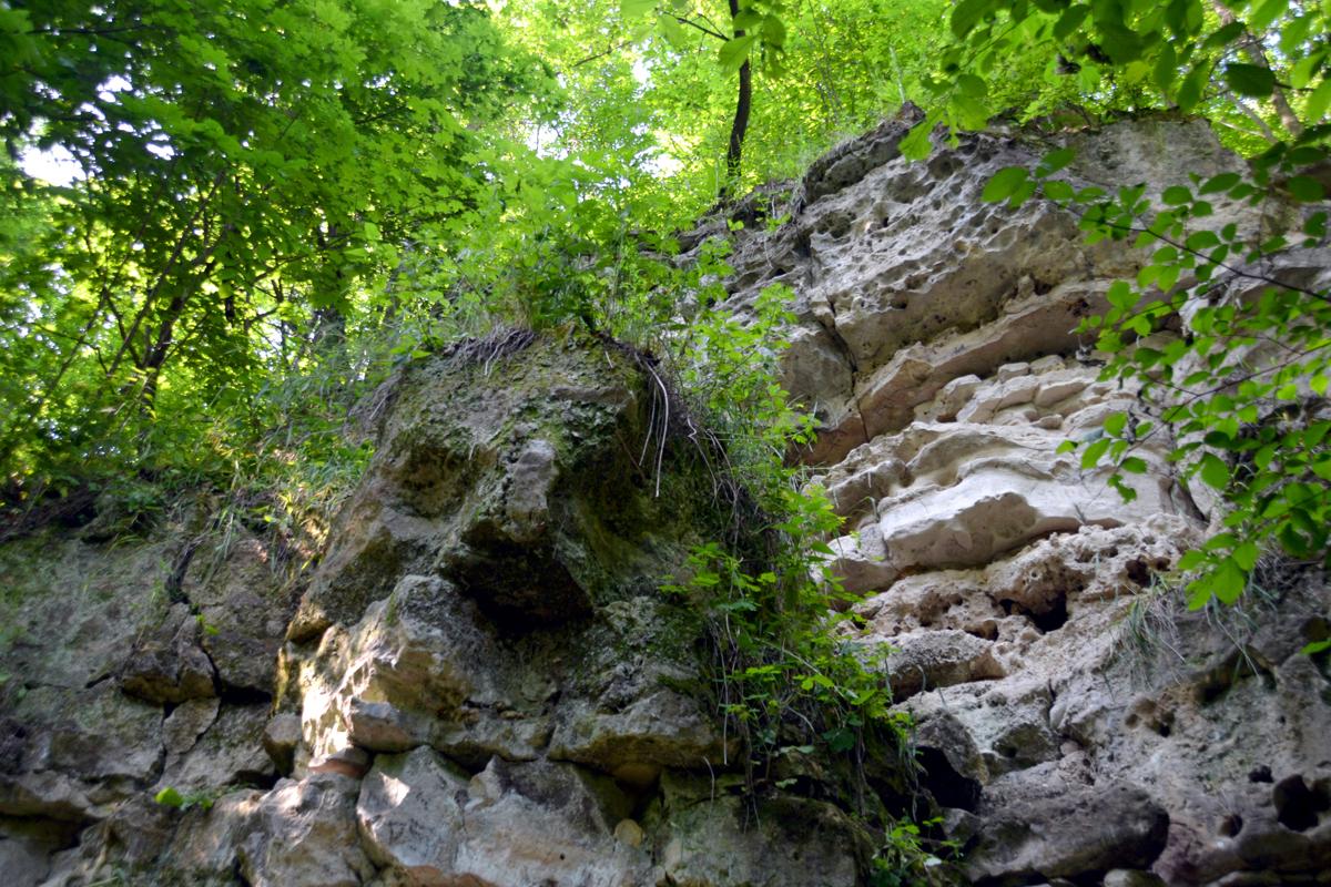 8. Каменное лицо